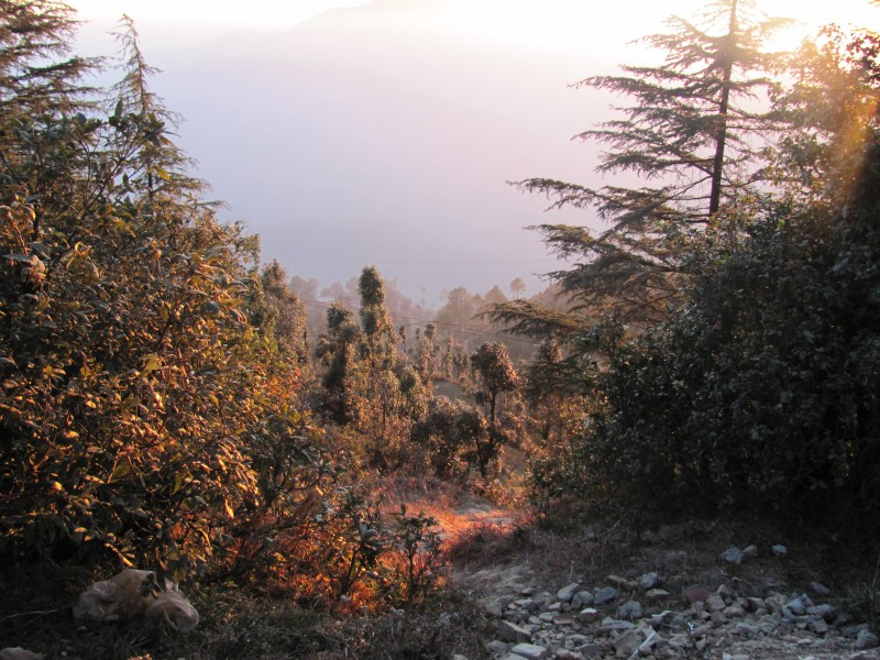 View of the valley, on the way to Kanatal