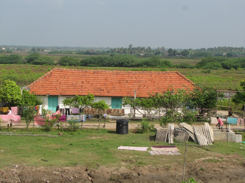 Excellent countryside, Antarvedi, East Godavari