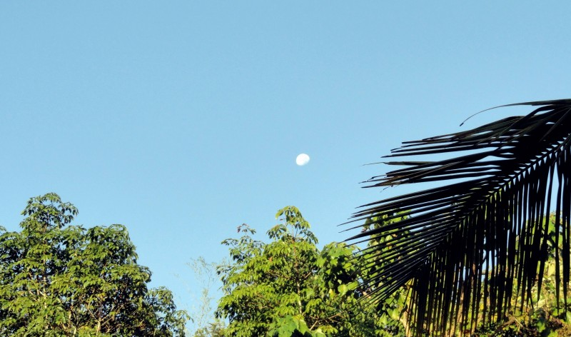 moon in early morning