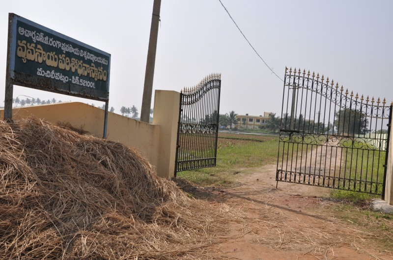 Agricultural Research Institute, Machilipatnam
