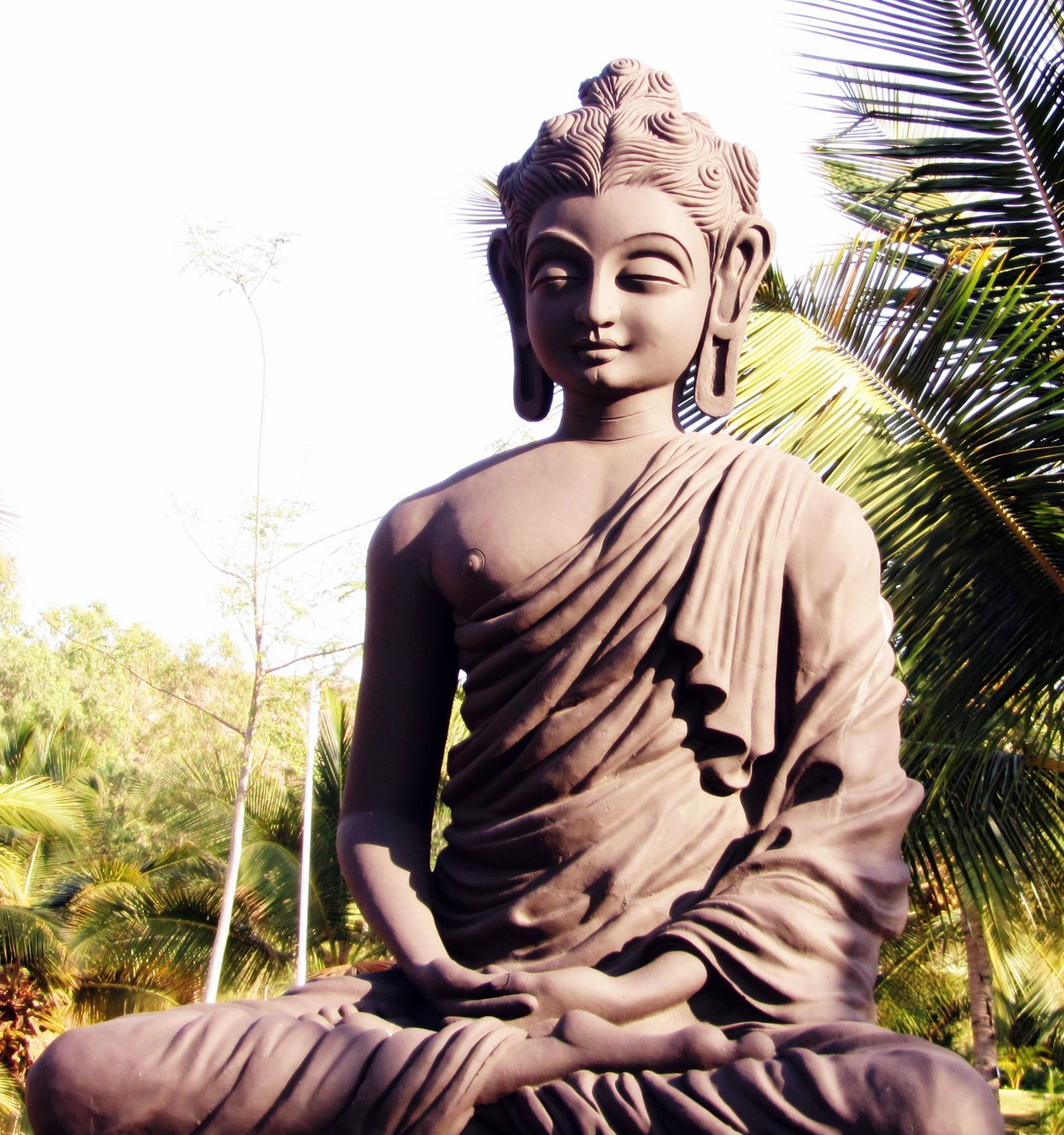 an overview of the brief history of buddhism and siddhartha guatamas work in india The future buddha, siddhartha gautama, was born in the fifth or sixth century bc in lumbini (in modern-day nepal) siddhartha is a sanskrit name meaning one who has accomplished a goal, and gautama is a family name.