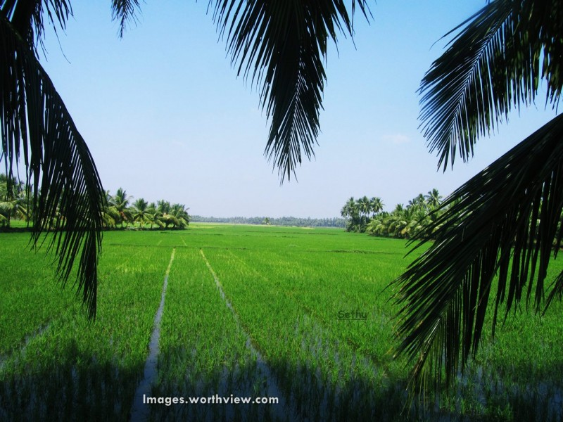 green-village-vari-andhra