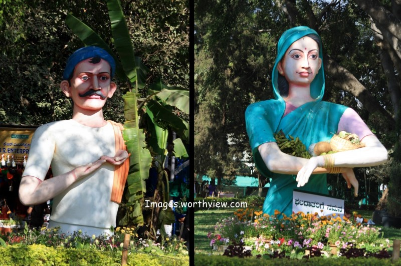 Lalbagh flower show 2014