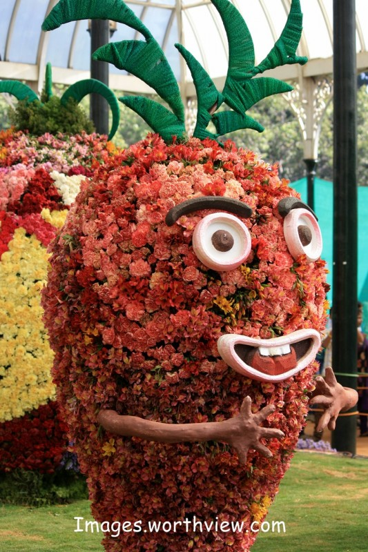 lalbagh gardens flower show bangalore